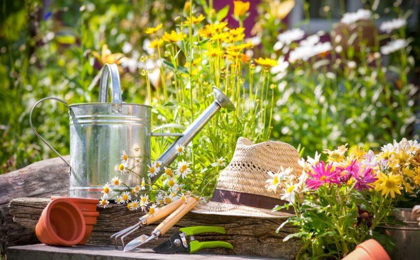 Quels sont les outils indispensables pour entretenir son jardin?